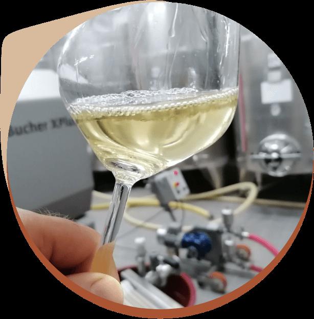 agiturismo relax wine tour